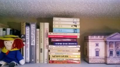 Bookshelves2